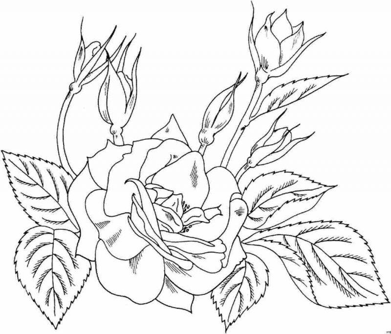 Mejores Imagenes De Amor Para Dibujar A Lapiz Faciles 30
